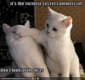 it's the victoria secret commercial  don't look at the bras