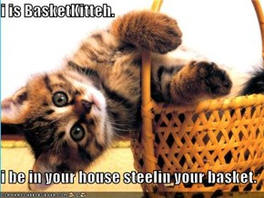 i is BasketKitteh.  i be in your house steelin your basket.
