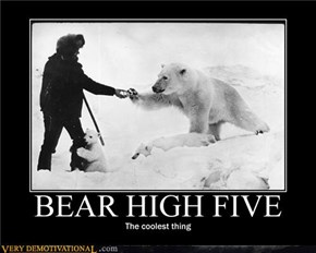 BEAR HIGH FIVE