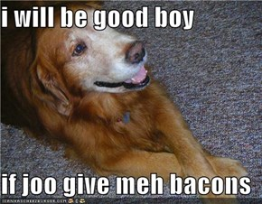 i will be good boy  if joo give meh bacons