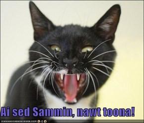 Ai sed Sammin, nawt toona!