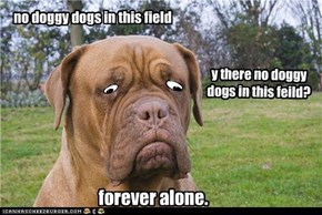 no doggy dogs in this field
