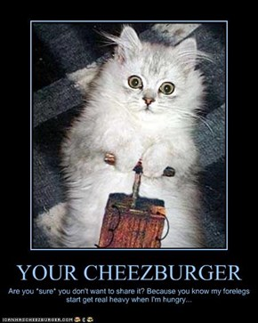 YOUR CHEEZBURGER