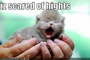 iz scared of hights