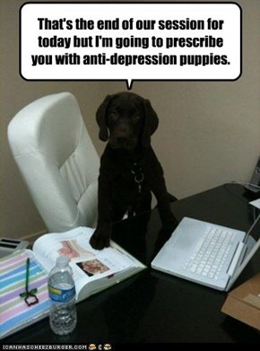 That's the end of our session for today but I'm going to prescribe you with anti-depression puppies.
