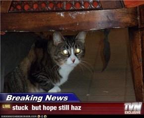 Breaking News - stuck  but hope still haz