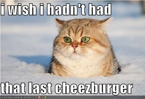 i wish i hadn't had  that last cheezburger