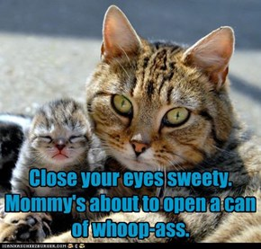 Close your eyes sweety.   Mommy's about to open a can of whoop-ass.