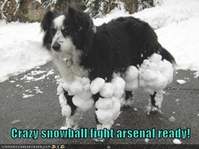 Crazy snowball fight arsenal ready!