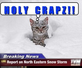 Breaking News - Report on North Eastern Snow Storm