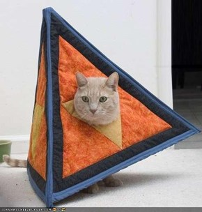 How to Construct a Catahedron
