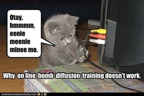 Why  on line  bomb  diffusion  training doesn't work.