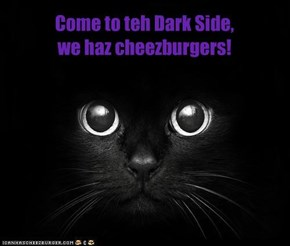 Come to teh Dark Side, we haz cheezburgers!