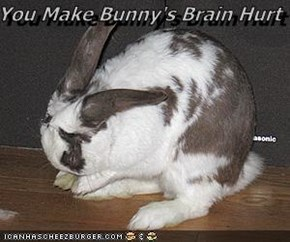 You Make Bunny's Brain Hurt