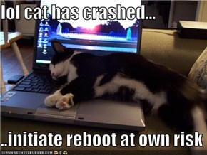 lol cat has crashed...  ..initiate reboot at own risk