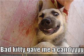 Bad kitty gave me a candyyyy