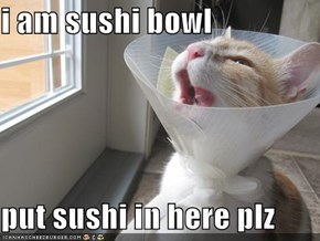 i am sushi bowl  put sushi in here plz