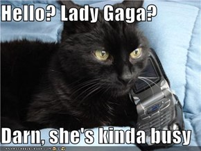 Hello? Lady Gaga?  Darn, she's kinda busy