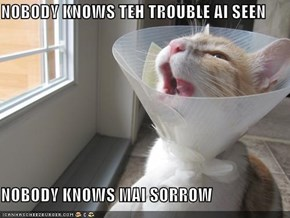 NOBODY KNOWS TEH TROUBLE AI SEEN  NOBODY KNOWS MAI SORROW