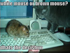 white mouse or brown mouse?  dhats the decishun