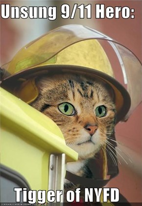 Unsung 9/11 Hero:  Tigger of NYFD