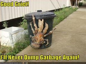 Good Grief!  I'll Never Dump Garbage Again!