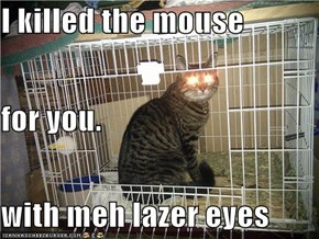 I killed the mouse  for you. with meh lazer eyes