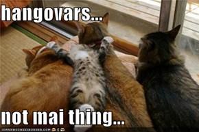 hangovars...  not mai thing...