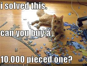 i solved this. can you buy a  10.000 pieced one?