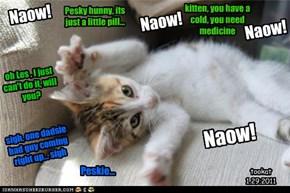 Naow!