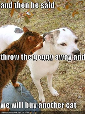 and then he said throw the goggy away and we will buy another cat