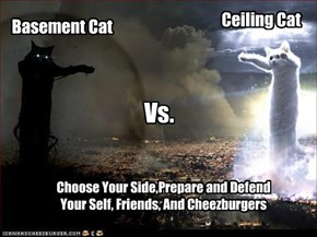 Basement Cat vs. Ceiling Cat