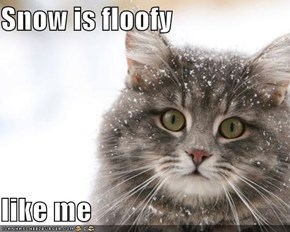 Snow is floofy  like me