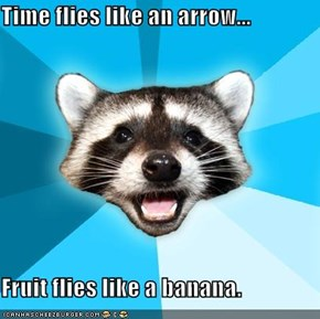 Time flies like an arrow...  Fruit flies like a banana.