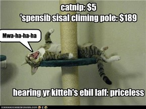 catnip: $5 'spensib sisal climing pole: $189       hearing yr kitteh's ebil laff: priceless