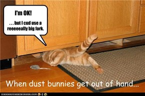 When dust bunnies get out of hand...