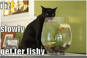 i iz slowly get ter fishy