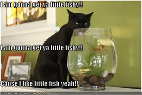 I am gonna get ya little fishy!! I am gonna get ya little fishy!! Cause I like little fish yeah!!
