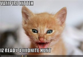 VAMPIRE KITTEH   IZ READY 4 MIDNITE HUNT