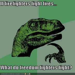 If firefighters fight fires...  What do freedom fighters fight?