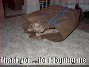 Thank you ... for adopting me