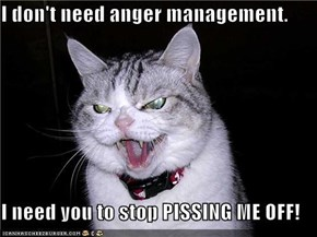 I don't need anger management.  I need you to stop PISSING ME OFF!