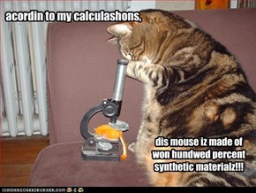 scientific kitteh