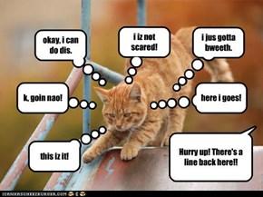 scaredy kitteh