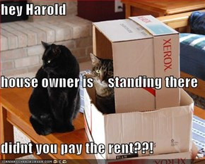 hey Harold  house owner is     standing there didnt you pay the rent??!