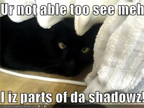 Ur not able too see meh.  I iz parts of da shadowz!