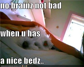 no brainz not bad when u has a nice bedz..