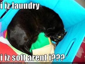 i iz laundry  i iz soft arent i???