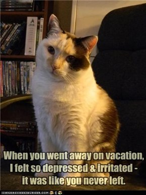 When you went away on vacation, I felt so depressed & irritated - it was like you never left.