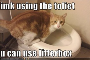 imk using the toliet  u can use litterbox